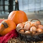 新玉ねぎの栄養の効果とは?玉ねぎと違う?加熱や水にさらすのはOKか?