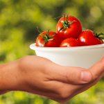 トマトの栄養には胃痛を防止する効果がある?
