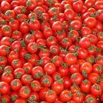 トマトの栄養素リコピンの効果とは?加熱に弱い?肌にも期待できるレシピ!