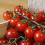 トマトを長持ちさせる保存方法!カットして半分にした場合どうする?