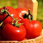 トマトを大量消費するご飯のレシピ!カレーやハヤシライスがおすすめ!